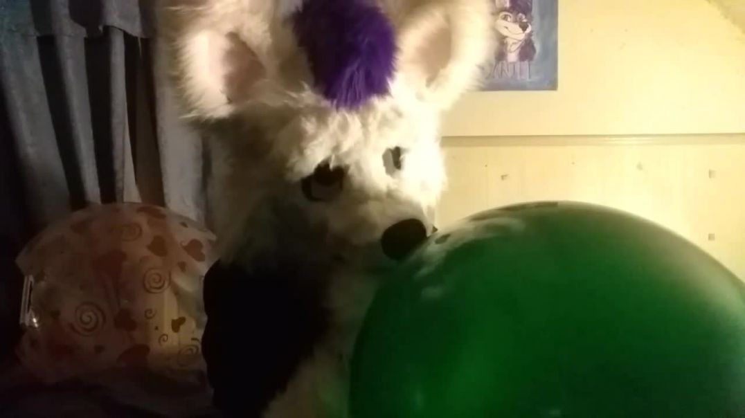 Blowing Up an Old Green Tuftex 24 inch Balloon