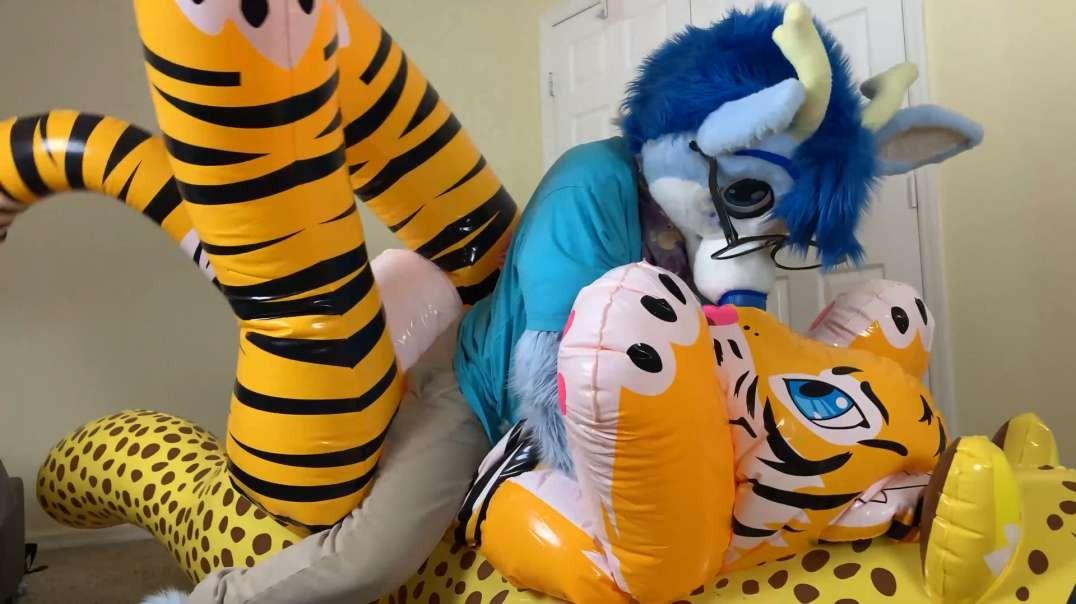 Tiger Deflation & Ride