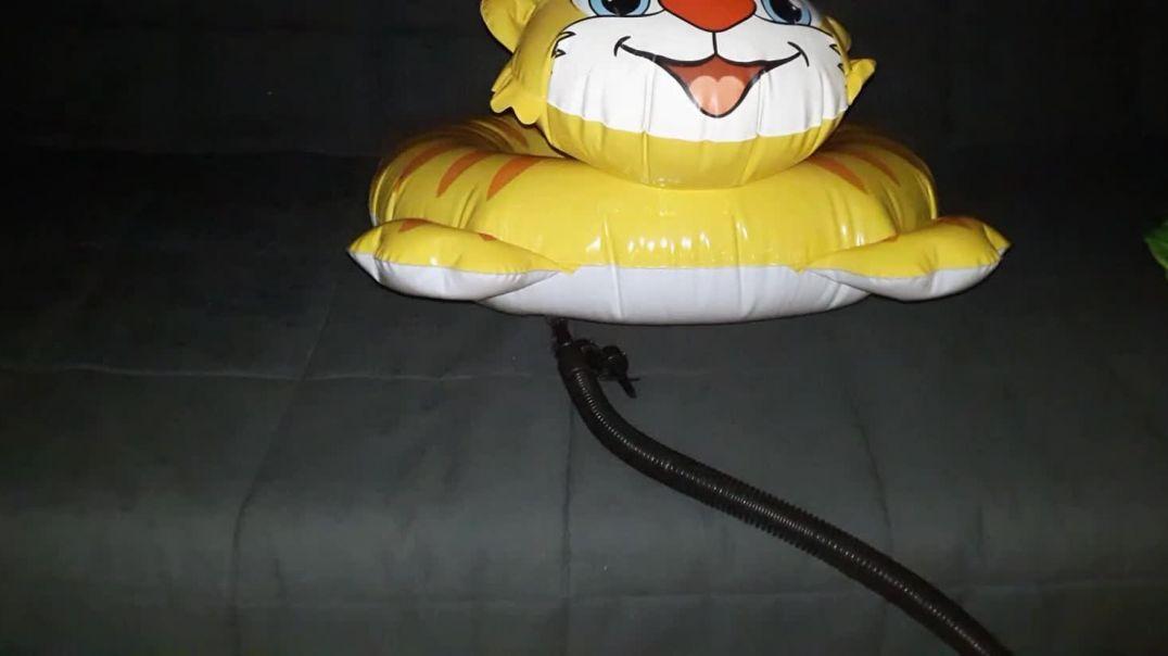 Intex Tiger Ring Inflation