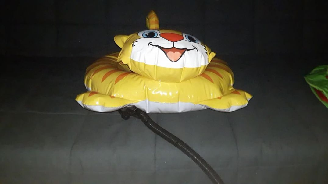 Intex Tiger Ring Deflation