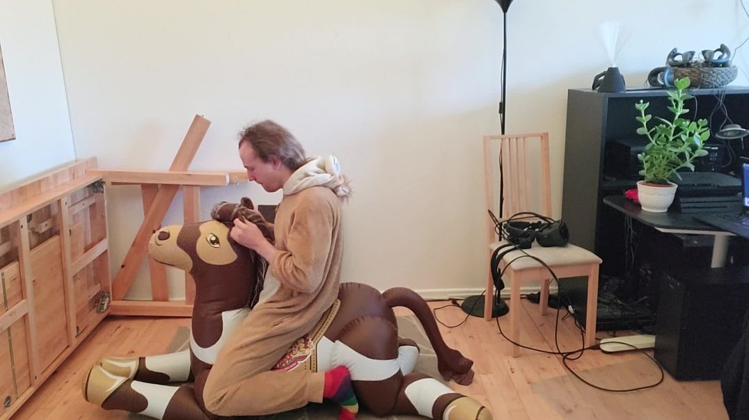 poney ride