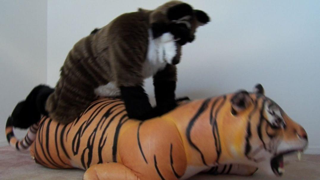 Hissy Lifelike Tiger