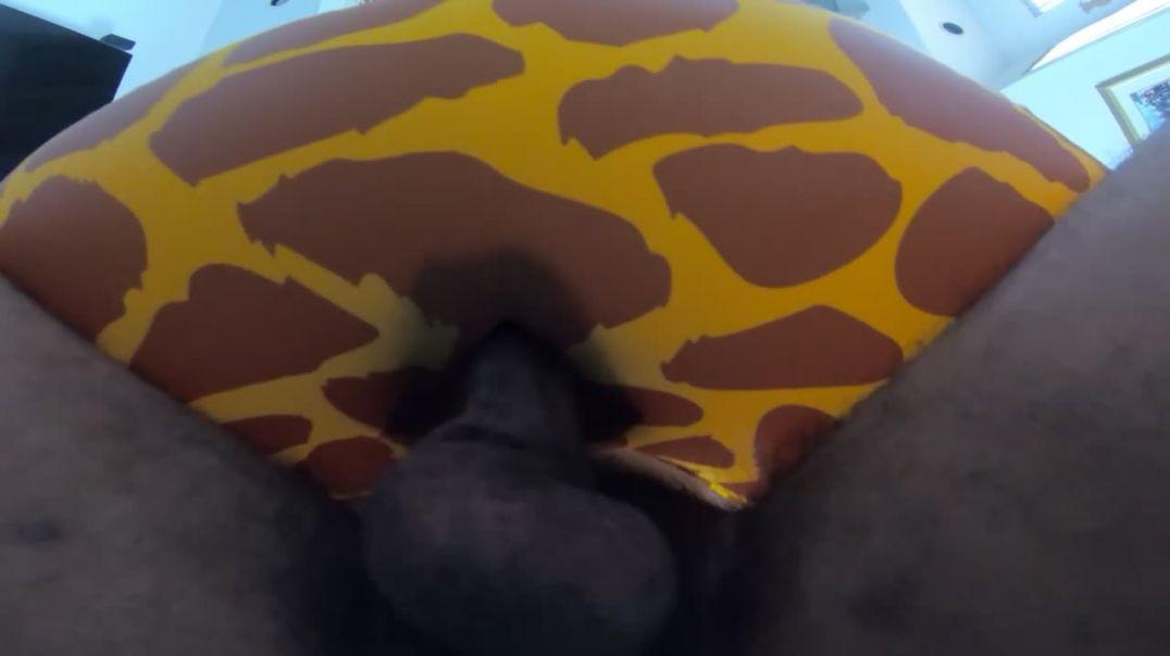 Giraffe SPH swim ring fuck