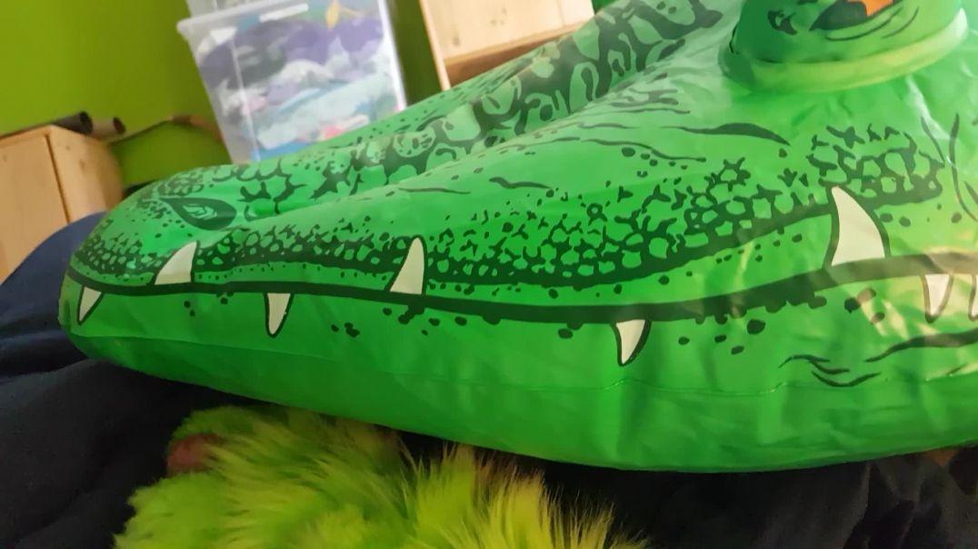 Crocodile pawing