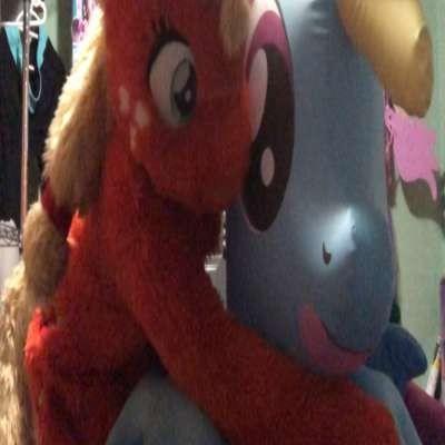 Ponies4Bronies
