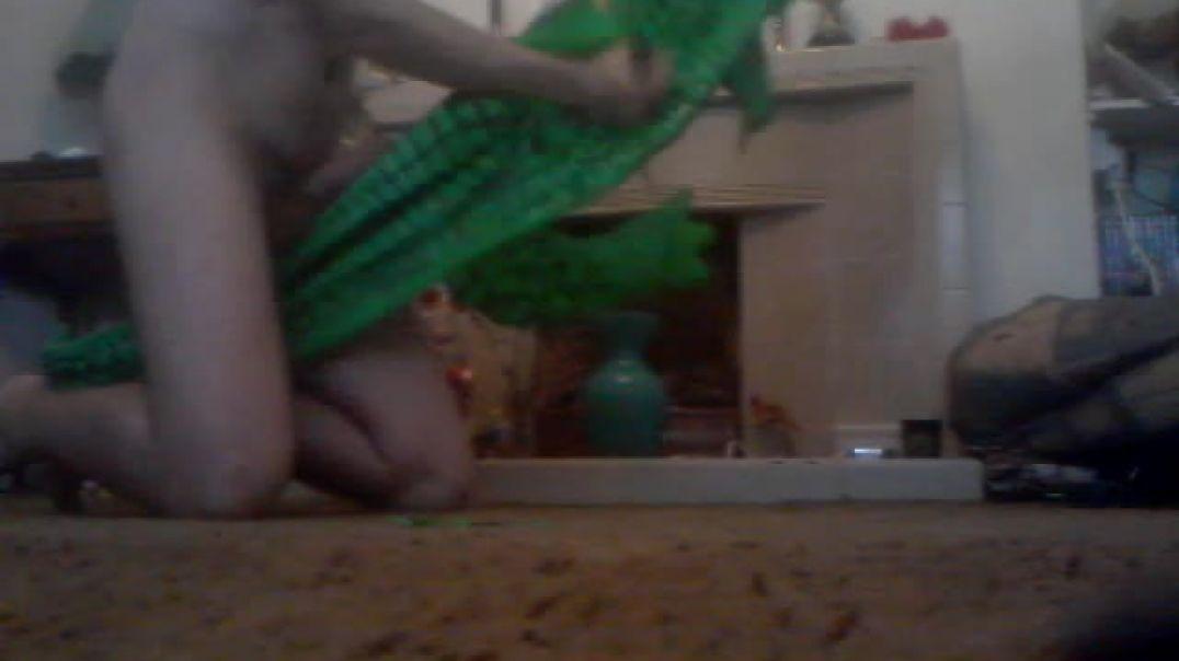crocodile slashed