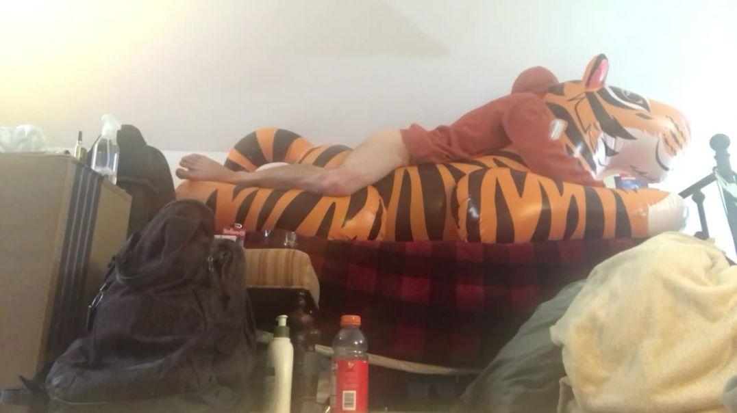 Tiger nearly puts me to sleep