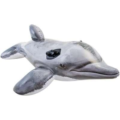LeakyDolphin