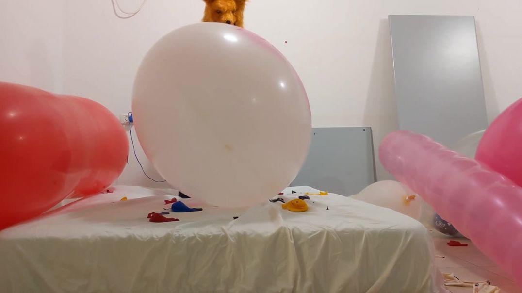 Balloon Popfest 2/5 - Pump + Sit popping