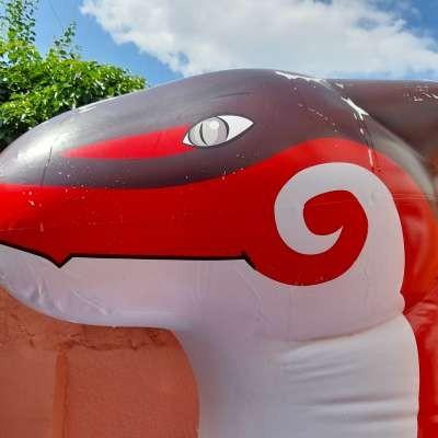 Deflatable Dragon