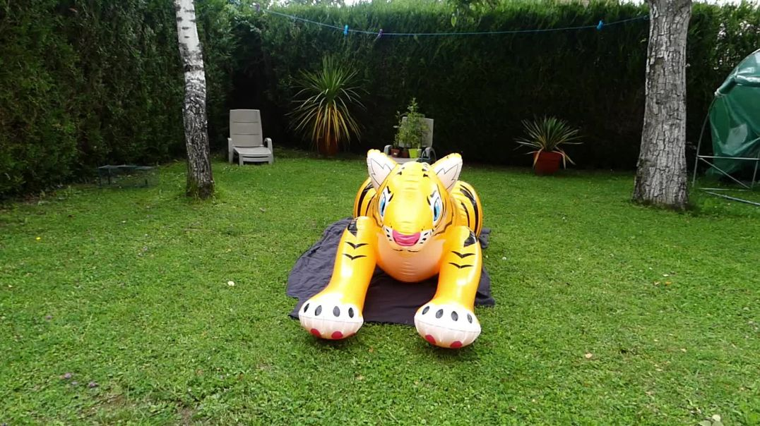 inflatable tiger inflatable world