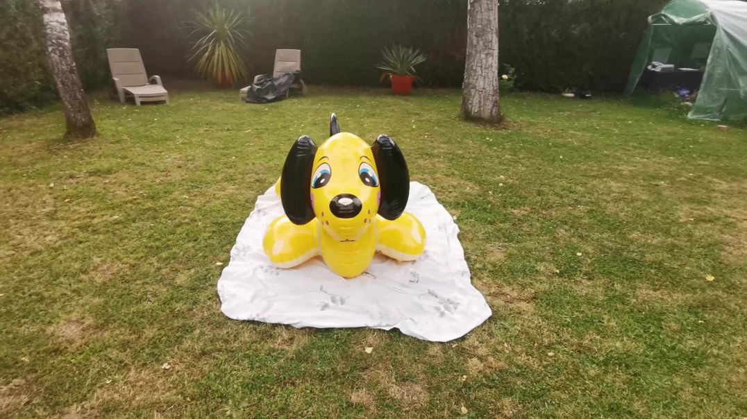 inflatable dog  puppy intex