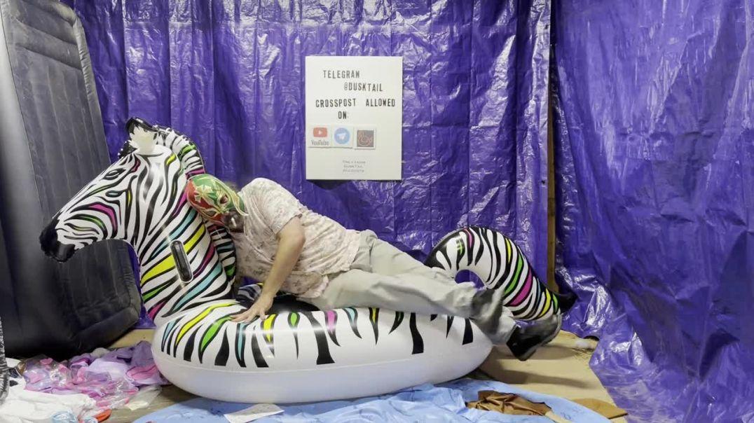 Popping a huge Zebra Float