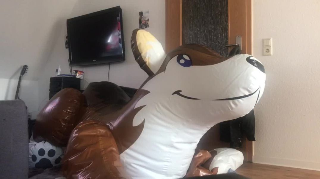 Inflating, Yiffing and Deflating PP Wolf